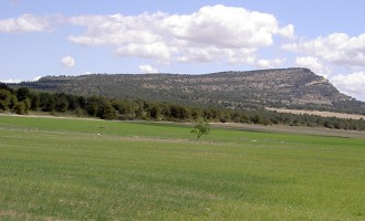 Castilla-La Mancha autoriza la construcción de una granja de cerdos cerca del Monte Arabí