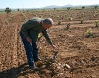 La crisis acaba con el 20% de los agricultores murcianos