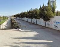 IU pide aumentar la señalización en la calle Arquitecto Justo Millán
