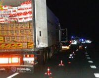 Un camionero protagoniza una huida de 70 kilómetros de la policía