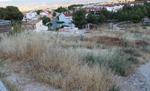 Las brozas se acumulan en la ladera del cerro del Castillo