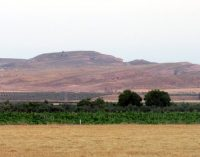Anida anuncia que hay dos proyectos de granjas porcinas en Las Moratillas