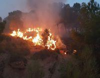 Controlado el incendio declarado en la sierra de Tobarrillas
