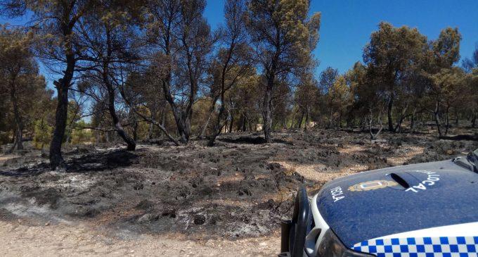 El incendio de Tobarrillas calcina 1,6 hectáreas de pino y matorral