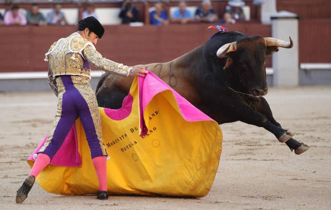 morenito de aranda corrida toros yecla