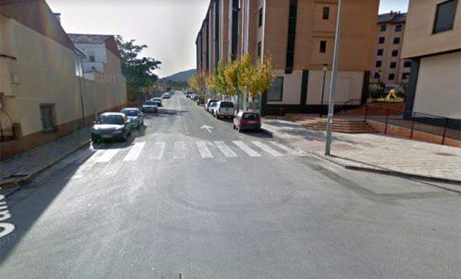 El PSOE pide que se construyan pasos elevados en la calle Águilas
