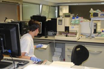 test laboratorio hospital